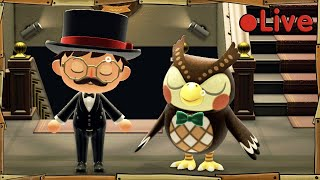 Animal Crossing - Museum Day - • Live