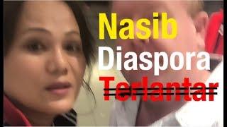 Video Menagih Janji Jokowi! MP3, 3GP, MP4, WEBM, AVI, FLV Desember 2018