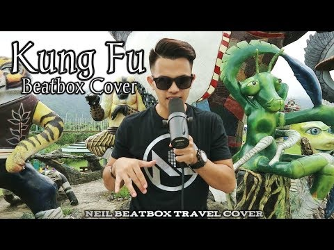 Neil Beatbox Travel Cover | Kung Fu Beatbox