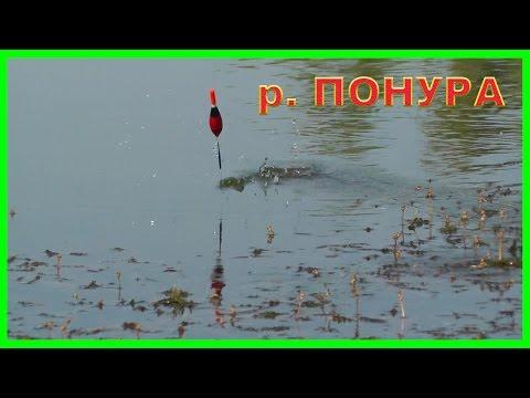 поплавок для ловли на канале