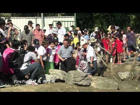 2017國際螢火蟲年會在台北-點亮世界的愛