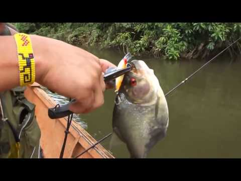 видео опасная рыбалка
