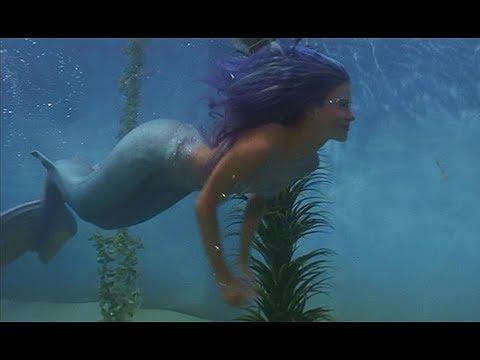 Neverland Mermaids rescue Peter Pan