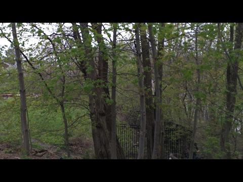 04.27.17 КАД: ПОЧЕМУ ТЫ НЕ УВАЖАЕШЬ РОССИЮ - DomaVideo.Ru