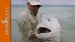 An amazing video of just one day in Christmas Island, with Peter Collingsworth catching many GT'S on fly to over 100lb.