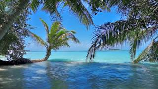 Ocean waves on tropical island Maldives ambience sound, paradise beach sounds for relaxation, sleeping, meditation & studying.