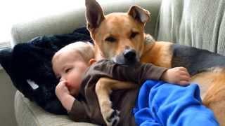 Mały chłopiec leżał z gorączką na kanapie. Kiedy mama do niego zerknęła, nie wierzyła własnym oczom.
