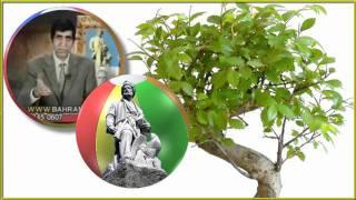Bahram MOSHIRI,بهرام مشيري ◊◊◊ FERDOWSI, اسلام و فردوسي