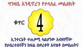 የቀጣዩ የትግል እርከን መነሾዎች! Awareness Campaign _4 By Dimtsachinyisema 4