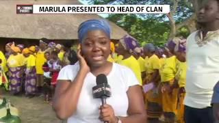 Video 7th Annual Umthayi Marula Festival kicks off MP3, 3GP, MP4, WEBM, AVI, FLV Juli 2018