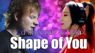Video Ed Sheeran & J.Fla- Shape Of You《Duet》HQ Audio MP3, 3GP, MP4, WEBM, AVI, FLV Agustus 2018
