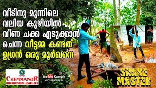 Video Housewife sees a Cobra in front of the house | Snakemaster | Vava Suresh | EP 396 MP3, 3GP, MP4, WEBM, AVI, FLV Desember 2018