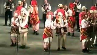 Chepurnen'ka. Halychyna Ensemble