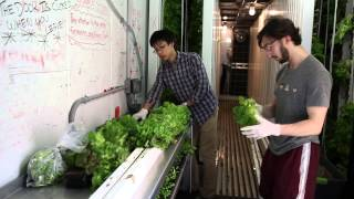 Freight Farm Publishes a Video About Our Farm!
