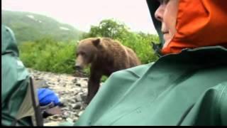 Video Farmington couple faced grizzly charge MP3, 3GP, MP4, WEBM, AVI, FLV Mei 2017