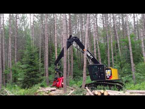 Waratah Dangling Saw Head 2 (видео)