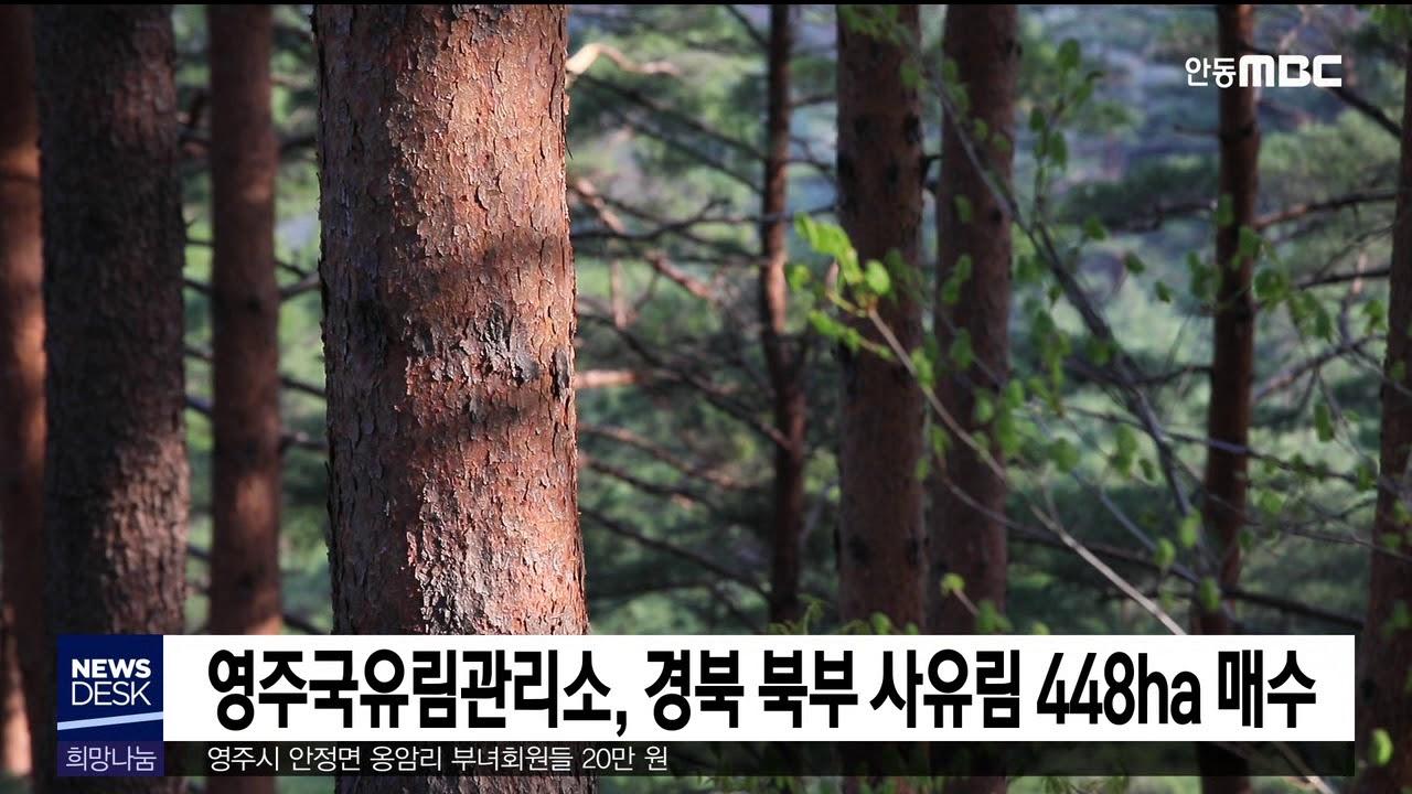 경북북부 사유림 448ha 매수