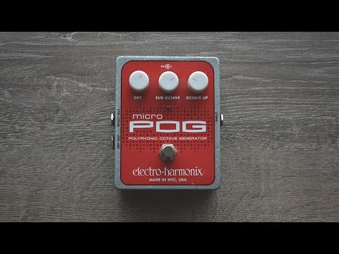 Electro-Harmonix MICRO POG In-Depth Review [Bass]