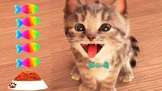 Video Little Kitten My Favorite Cat Pet Care Game - Fun Play Kitten Mini Games For Children MP3, 3GP, MP4, WEBM, AVI, FLV April 2019