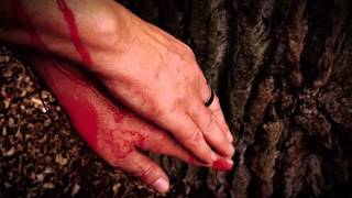 Video Olda Krejčoves - Ruce (oficiální video z alba Tabula rasa? Milan
