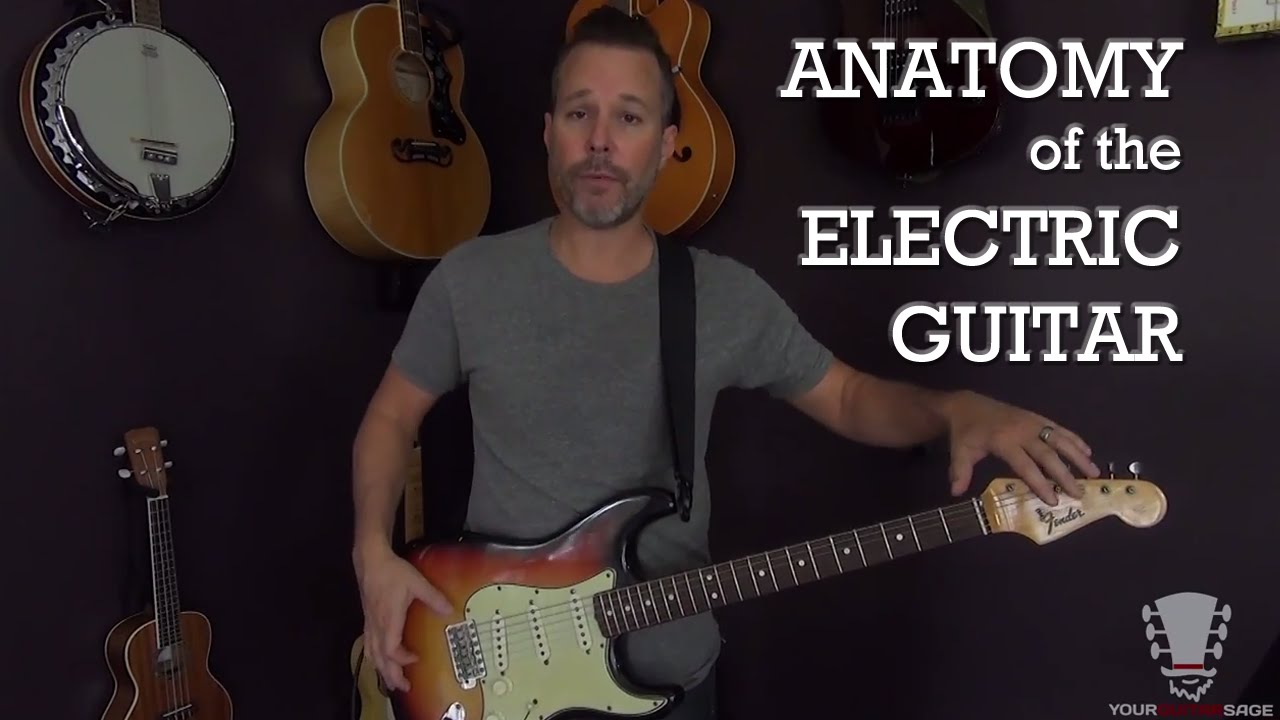 All About the Anatomy of the Electric Guitar