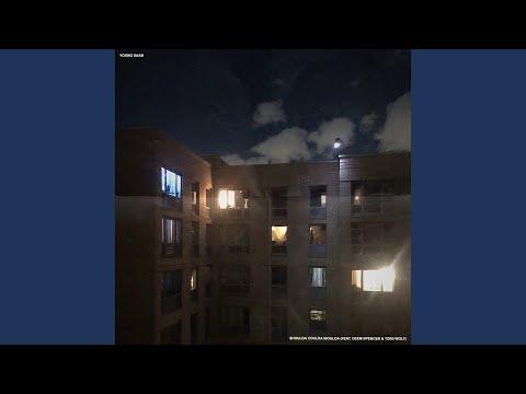shoulda coulda woulda (feat. Deem Spencer & Torii Wolf)