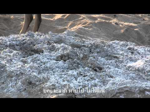 การเผาศพในแม่น้ำเนรัญชรา พุทธคยา