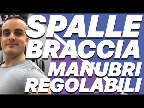 Allenamento con Manubri Regolabili #2 - Braccia e Spalle