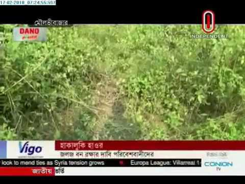 Environmentalists demand protection of water forest (17-02-2018)