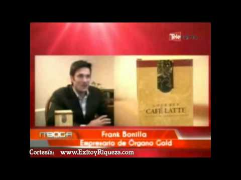 480 x 360 · 11 kB · jpeg, Frank Bonilla Empresario de Organo Gold