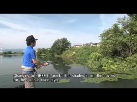 gratis download video - Japan-Bass-Fishing-TAIRYO-SEIKATSU-Vol64--JACKALL