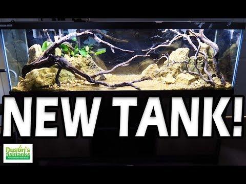 FRESHWATER Aquarium Setup - NEW (2018)_Akvárium