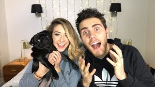 ZALFIE SIMS IS COMING BACK