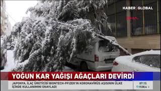 Ekiplerimiz Kardan Dolayı Yıkılan Ağaçlara Müdahele Ediyor - Haber Global