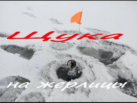 Отличное открытие зимней рыбалки. Ловля щуки на жерлицы зимой. Река Унава (видео)
