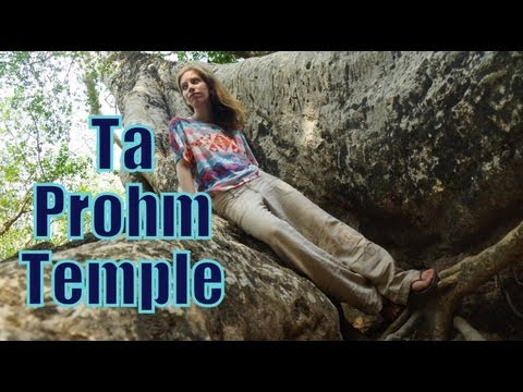 Exploring Ta Prohm Temple at Angkor, Cambodia