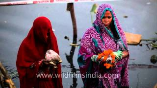 image of Women offering prayers to God Sun on the occasion of Chhath Puja