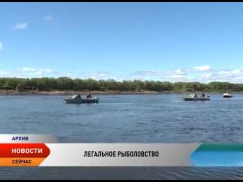 Легальных рыбаков в НАО становится больше
