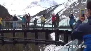 Jasper (AB) Canada  city pictures gallery : Glacier Skywalk in Jasper National Park, Alberta, Canada