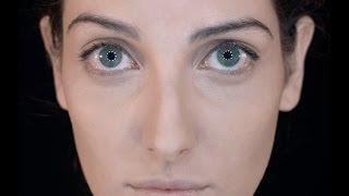Clarice Falcão - Survivor