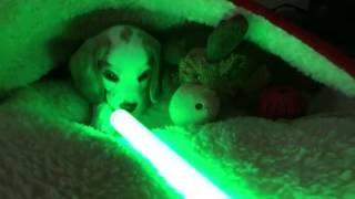Video Sherlock cares not for lightsaber Jedi MP3, 3GP, MP4, WEBM, AVI, FLV Mei 2018