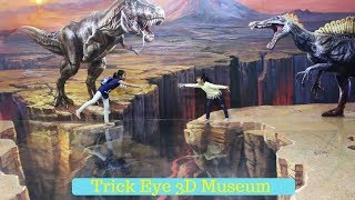 Video 3D MUSEUM ♥ FUN at Trick Eye Museum MP3, 3GP, MP4, WEBM, AVI, FLV Agustus 2018