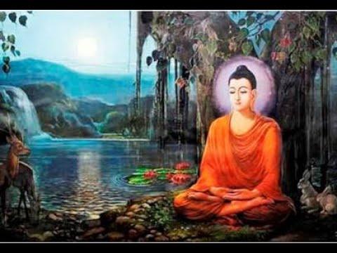 Who is Buddha? in English (Bài 3) - ĐĐ Thích Hạnh Định