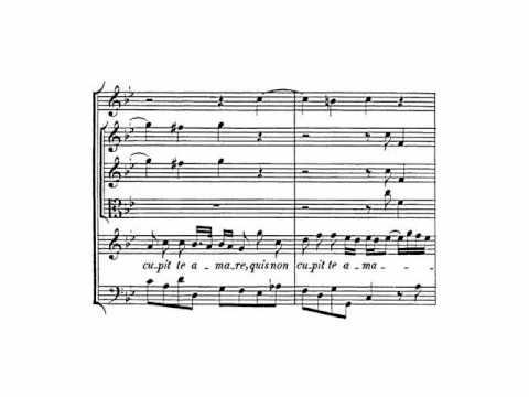 Händel: HWV 242 - Silete venti (2/4) - Gauvin (Labadie)