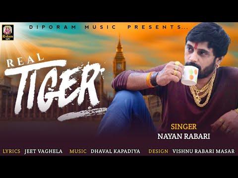 Aa gaya real tiger nayan rabari ( baroda ) new song