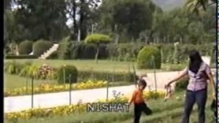 Nishat Garden., Srinagar