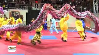 Show Danse du Dragon MAROC 2018