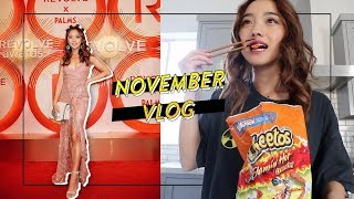 Spicy Times at Home & Vegas   Nov Vlog by Clothes Encounters