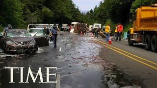 Truck Overturns and Floods Highway With Sea of Slithering Eels