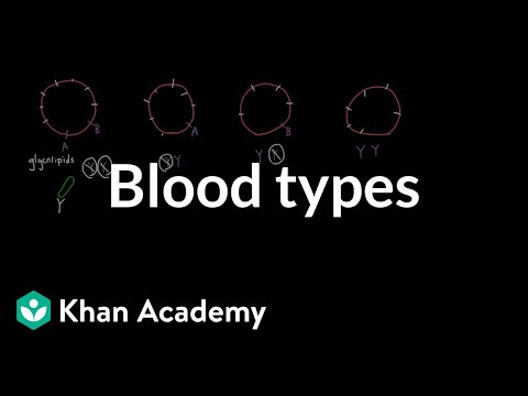 Can you find a list of rare blood types online?